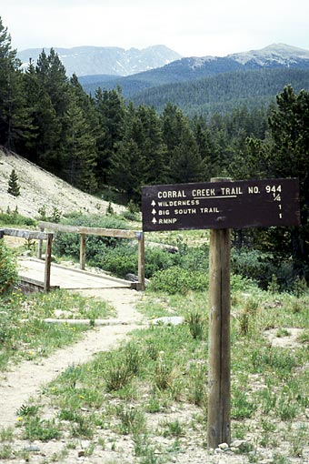 Trail into the Big South Fork of the Poudre, Big South Fork of the Poudre (CO).  Copyright Chris Bell.
