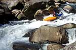 Cecil in his kayak paddling the Lower Rocky Broad (NC).  Copyright Chris Bell.